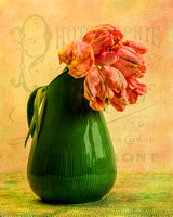 Parrot Tulips and Pitcher
